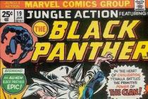 black panther and masculinity The Mantle